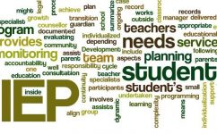 IEP Document Review