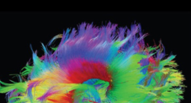 How Neuroimaging Can Serve Patients & Families Dealing with Psychiatric Illness