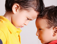 Webinar: It's Not Nice to Hit People: Understanding & Managing Aggression in Young Children