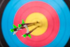 Therapeutic Archery