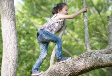 Webinar: Supporting Mental Health During Summer Fun