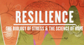 """""""Resilience"""" Documentary On-Line Event"""